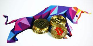 Bitcoin BTC bull