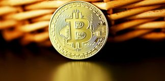 Bitcoin BTC před košem