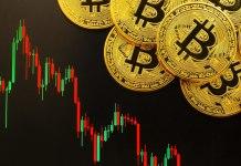 Panika na trhu je ideálním obdobím na nákup - tvrdí CEO Pantera Capital!