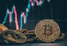 Analýza BTC a altcoinov. Zdroj: Shutterstock.com/DRN Studio