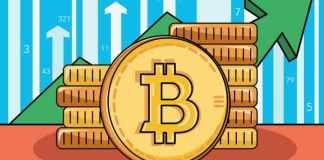 Bitcoin narostl díky whales