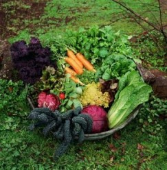 Fall-Garden-Basket-294x300