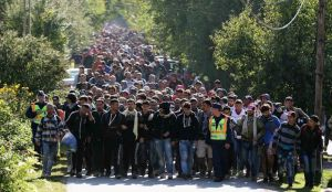 muslim -Austrian-migrants