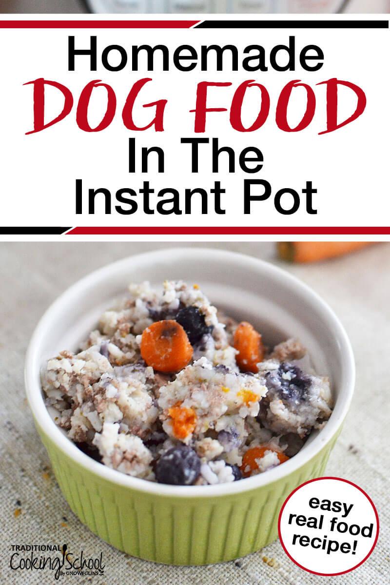 Best Diabetic Dog Food Recipe : diabetic, recipe, Homemade, Instant, Traditional, Cooking, School