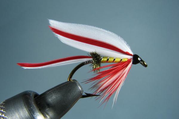 Parmachene Belle Wet Fly