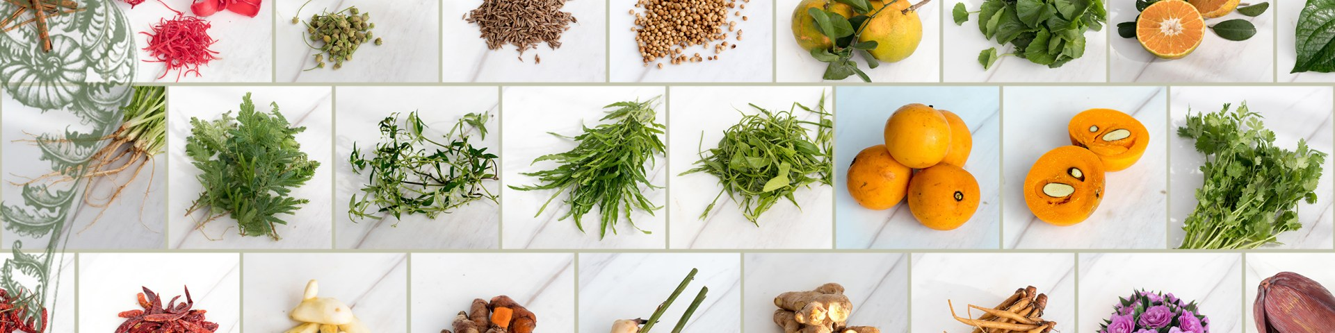 Header Ingredients Grid 01