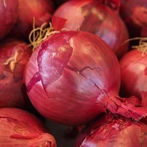 Red Onion (หอมแดง)