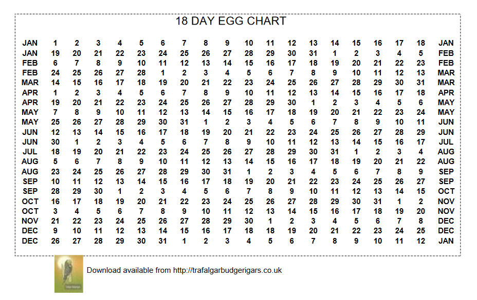 18 Day Egg Chart made available by Trafalgar Budgerigars