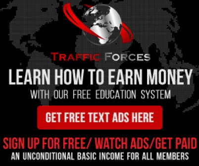 TRaffic Forces Banner 300x250 English