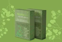 Traffic Ivy Coupon