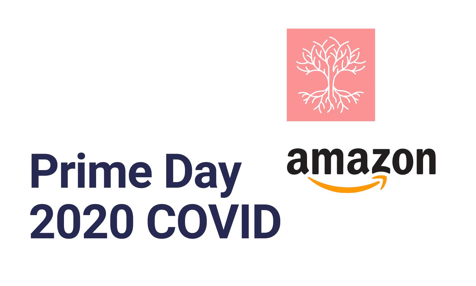 Amazon Prime Day Covid ecommerce