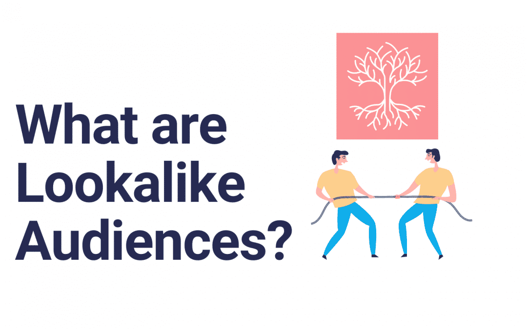 Lookalike Audiences to Increase Sales and ROAS