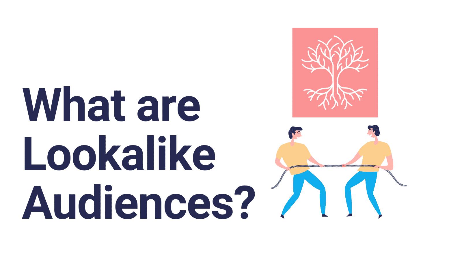 lookalike audiences cannabis cbd advertising