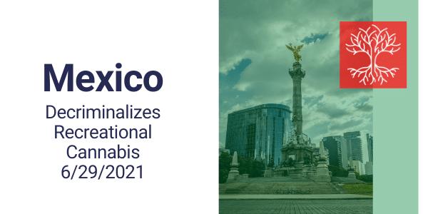 Mexico Decriminalizes Recreational Cannabis