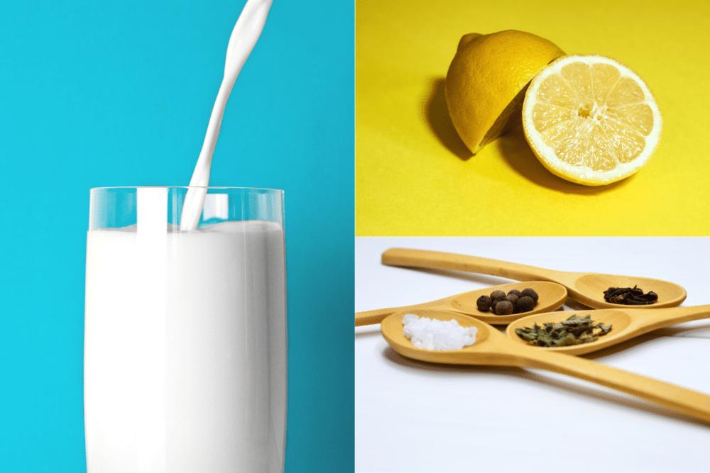ingredientes-queso-casero