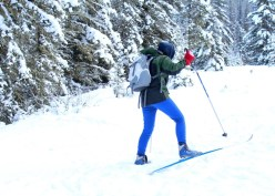 Cross country skiing, Alberta, Canada