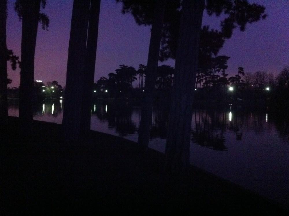 Sortie au bois de Boulogne à l'aube