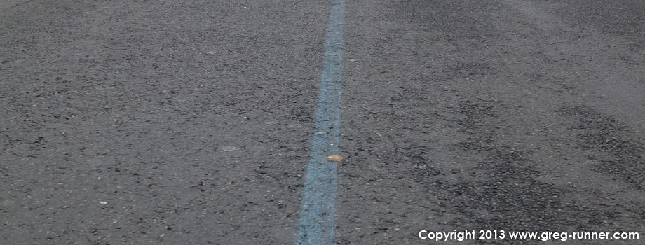 Ligne bleue du marathon