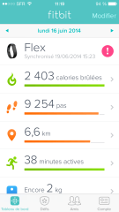 Fitbit Flex Application