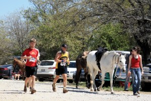 Runners finishing along side horses