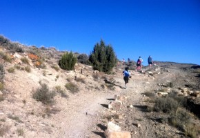 Uphill climb at Desert RATS 25 mile race