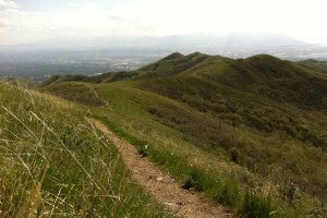 picutre of beautiful spring run along the wasatch 100 course