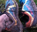 picture of muddy legs and scott shoes after a wet trail run