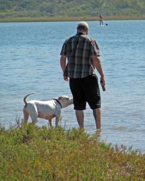 Man-dog-paddler1557