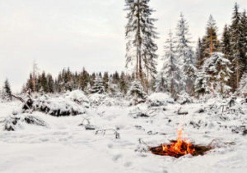 winter-survival-2