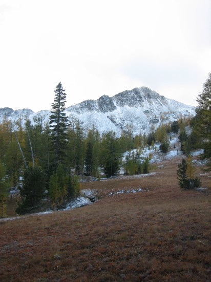 Switchback Peak From Cooney Meadows