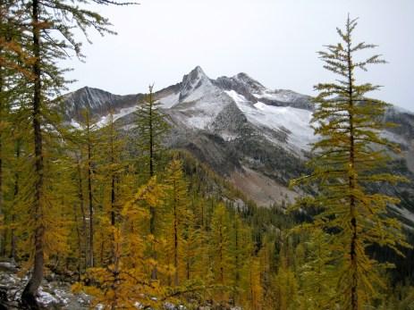 Mt Lago Above Larches