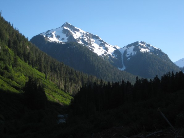 Mineral Mountain From Chilliwack Trail