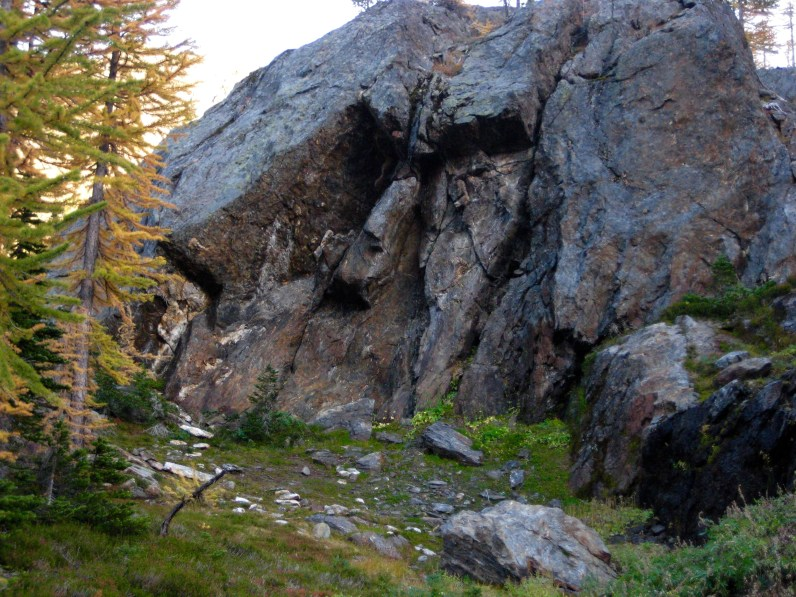 Simian Face In Schist Outcrop