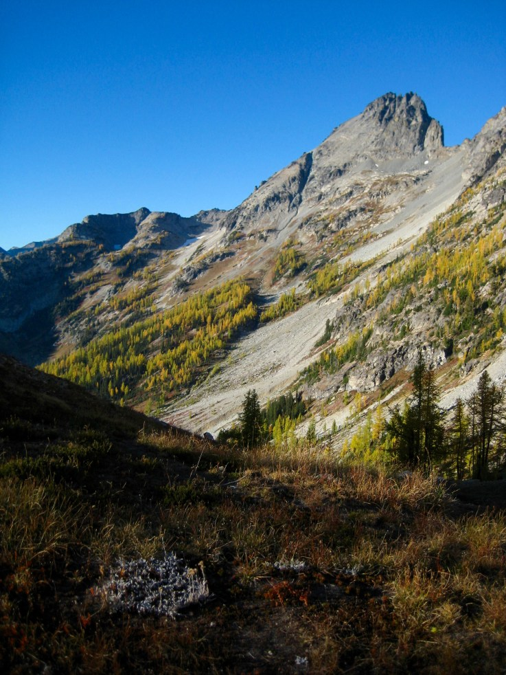 Seven-Fingered Jack From Leroy Pass