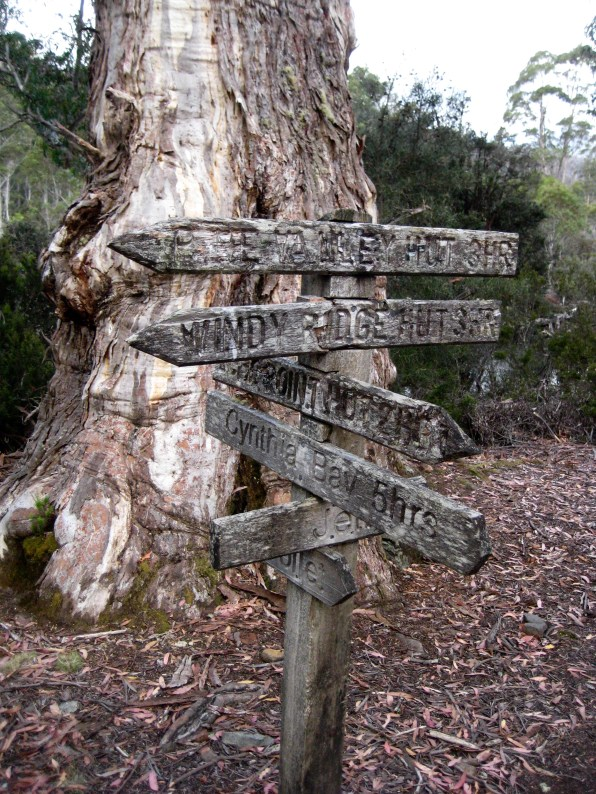 Weathered Trail Sign At Narcissus Junction