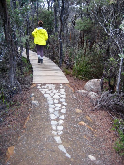 Decorative Trail To Cape Pillar