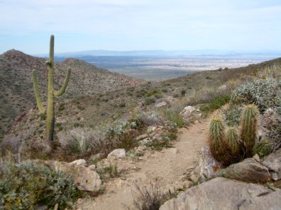 Upper Mesquite Canyon Trail