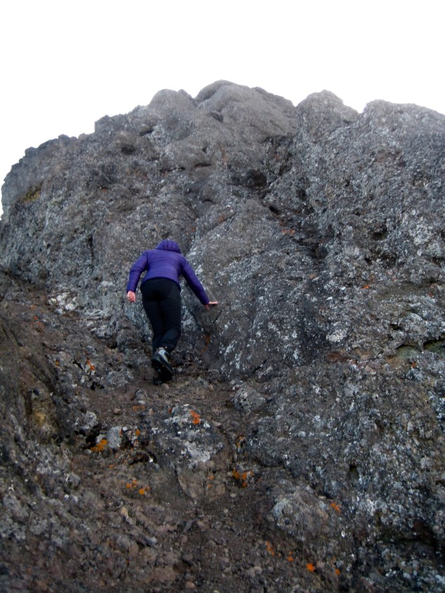 Scrambling Up West Face Of Mt Angeles