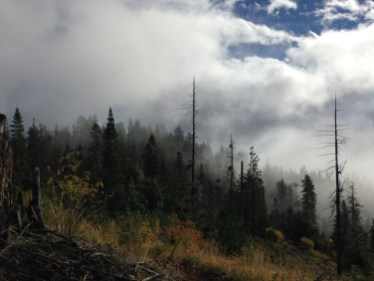 The fog was pretty spectacular