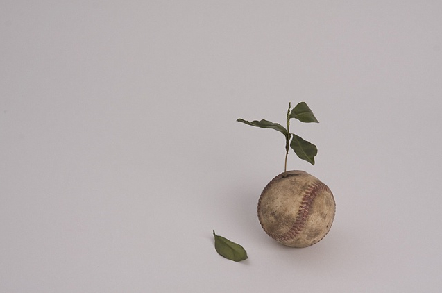 "Untitled (Baseball Plant)"" by Ali Bailey, 2009. Cast polyurethane, brass, epoxy and oil paint. Photo courtesy Golden."