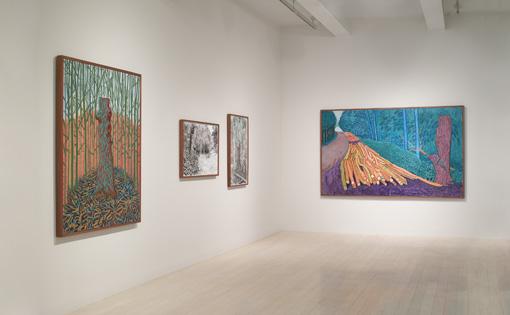 David Hockney: Paintings 2006-2009 at PaceWildenstein Gallery, New York.