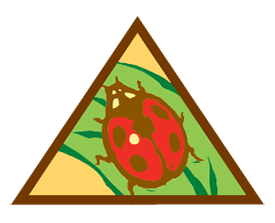 Brownie Bugs Badge