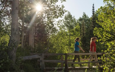 5 Ways for Girl Scouts to Mindfully Reduce Stress