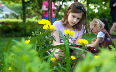 6 Outdoor STEM Activities for Brownies