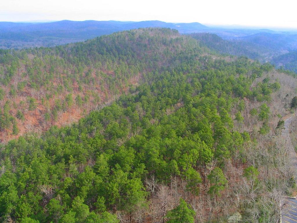 5 Best Day Hikes in Hot Springs National Park Trailhead Traveler