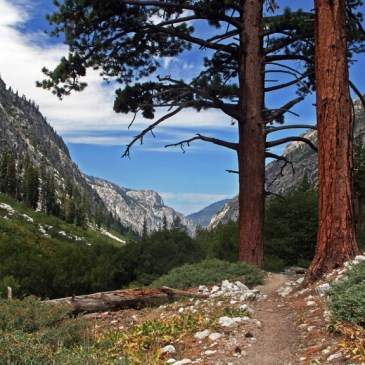 9 Best Day Hikes in Sequoia National Park