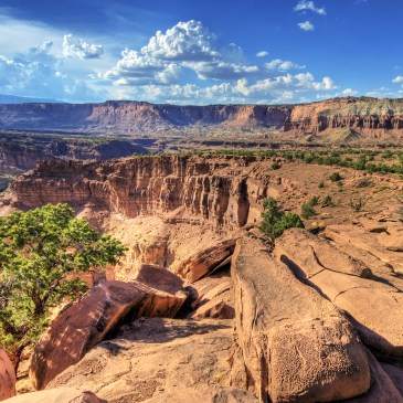 10 Best Day Hikes in Capitol Reef National Park