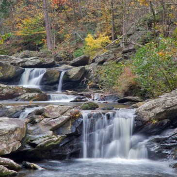 Hikes in Talladega National Forest (AL)