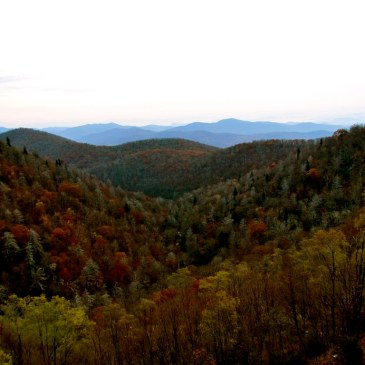 Best Hikes in Pisgah National Forest (NC)