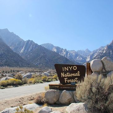 Best Hikes in Inyo National Forest (CA)